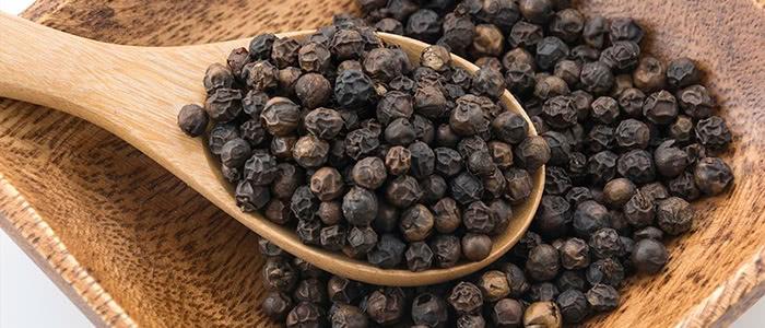Benefícios da Piperina para quem sofre com dores crônicas